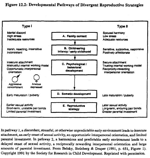 race-evolution-and-behavior-rushton-figure-12-2