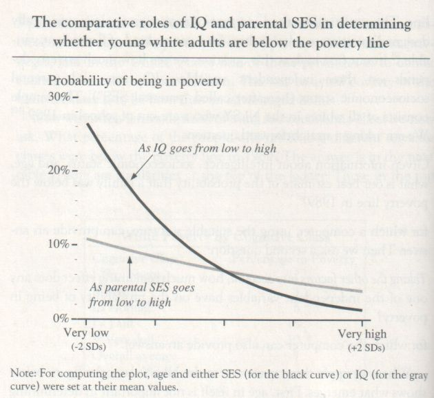 the-bell-curve-1994-herrnstein-and-murray-graph-p-134