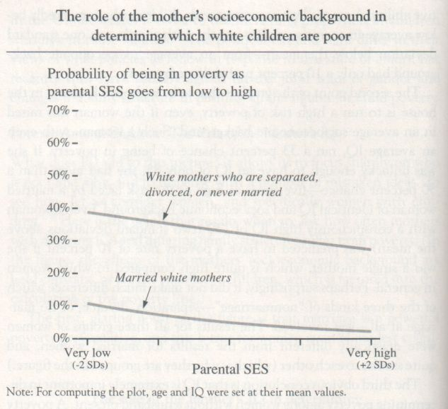 the-bell-curve-1994-herrnstein-and-murray-graph-p-140
