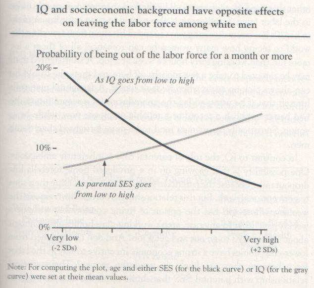 the-bell-curve-1994-herrnstein-and-murray-graph-p-159