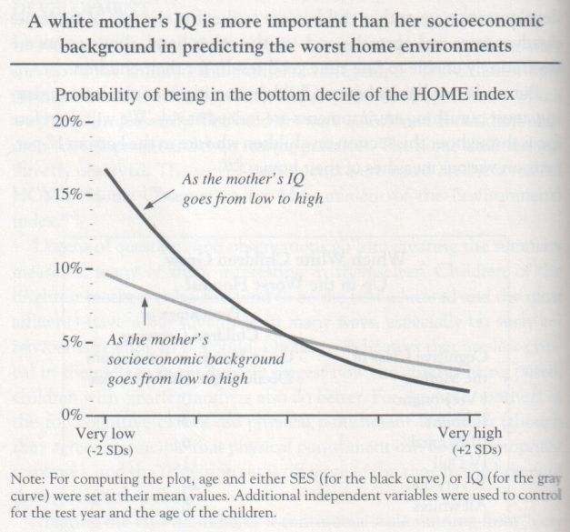 the-bell-curve-1994-herrnstein-and-murray-graph-p-222