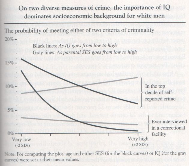 the-bell-curve-1994-herrnstein-and-murray-graph-p-249